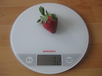 Erdbeere auf der Waage