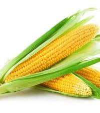 Macht Mais dick?