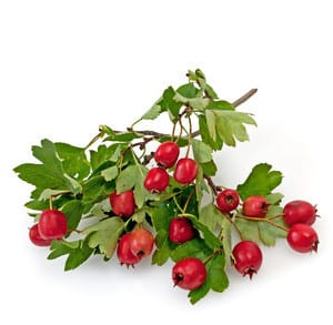Obst bei Bluthochdruck