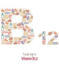 Vitamin B12: Vorkommen
